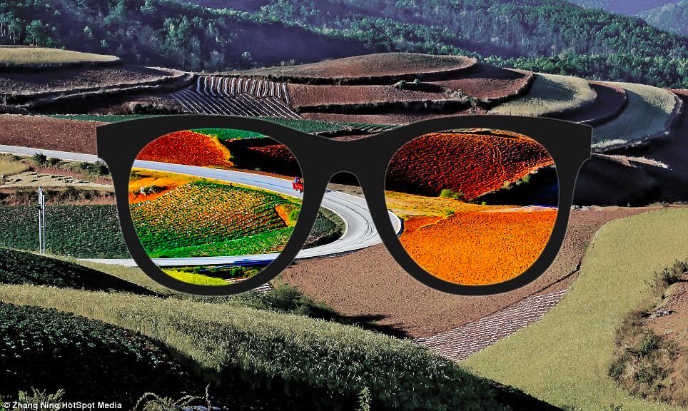 Diapo 2 : Lunettes enchroma et les changements de vision de couleurs avec un paysage en fond