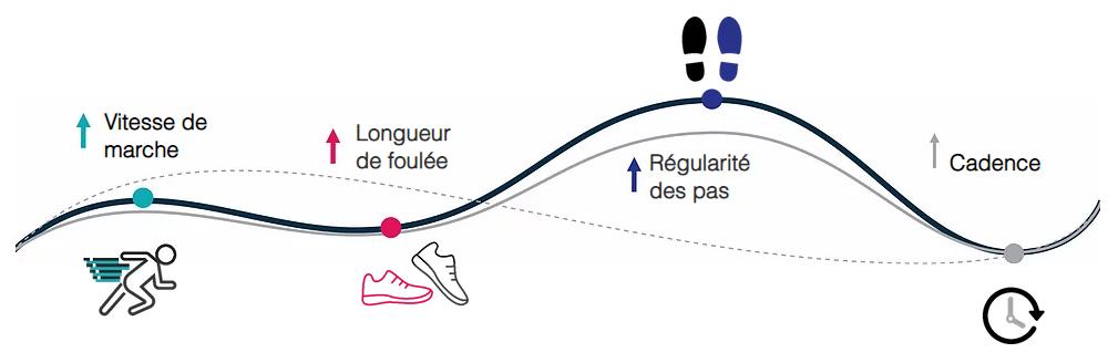 Diapo 3 : Les différentes étapes aidés par Walk, cadence, rythme de marche, foulée, longueur des pas
